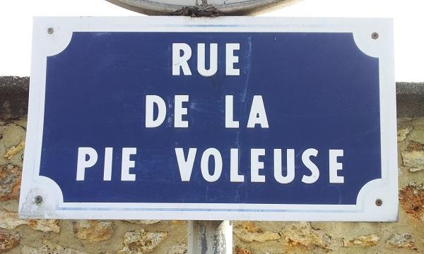 http://arthur.celeonet.fr/geocaching/rue-de-la-pie-voleuse-palaiseau.jpg